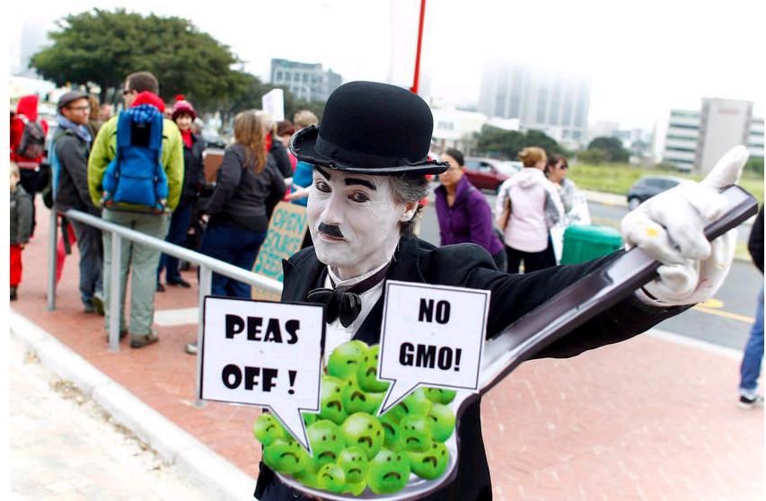 2013年5月25日,南非开普敦,南非示威者游行抗议美国著名农业生化公司孟都山制造转基因食品和有毒物品。