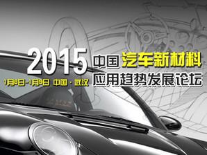 2015汽车会议 会后图片