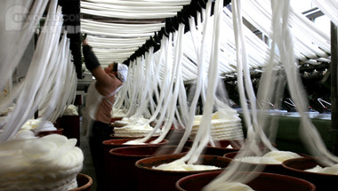 Xinxiang Chemical Fiber Spandex Project to see startup this year