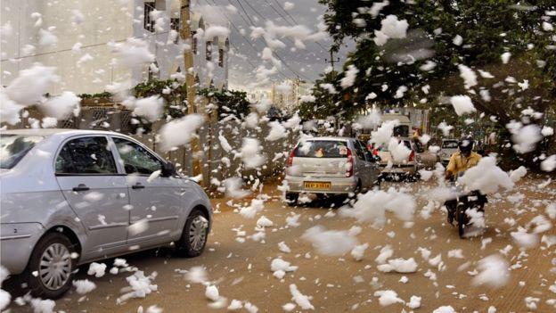 大风出现时,这些泡沫还会随风吹到空中,给当地居民造成很大的不便和安全隐患。