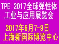 2017年全球弹性体工业与应用展览会
