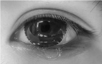 莆田鞋鬼市:黑夜给了他黑色的眼睛