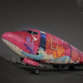 聚氨酯飞机喷漆作品 首对红蓝双色CP飞机亮相南苑机场