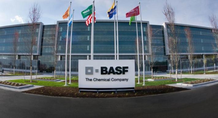 巴斯夫路德维希港TDI工厂重启将会给市场带来影响