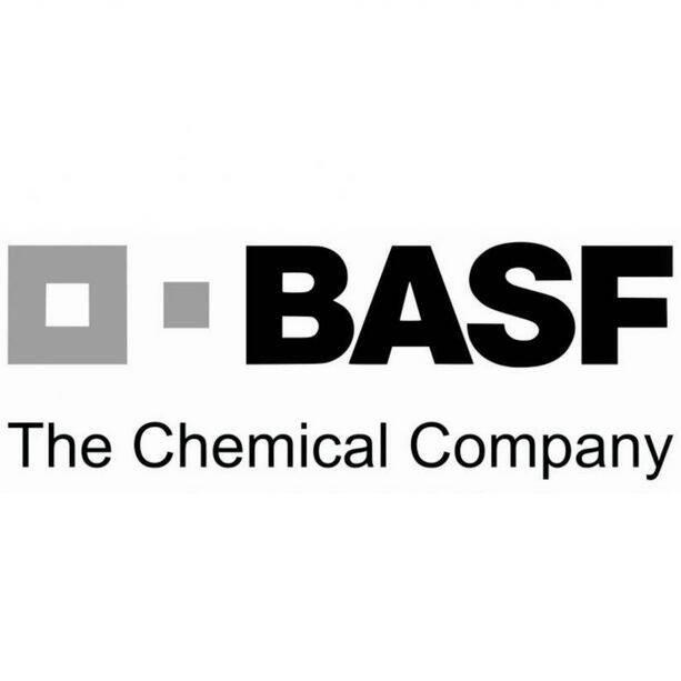 巴斯夫新材料有限公司