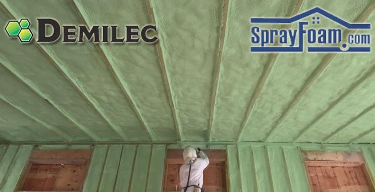 Image result for DEMILEC images